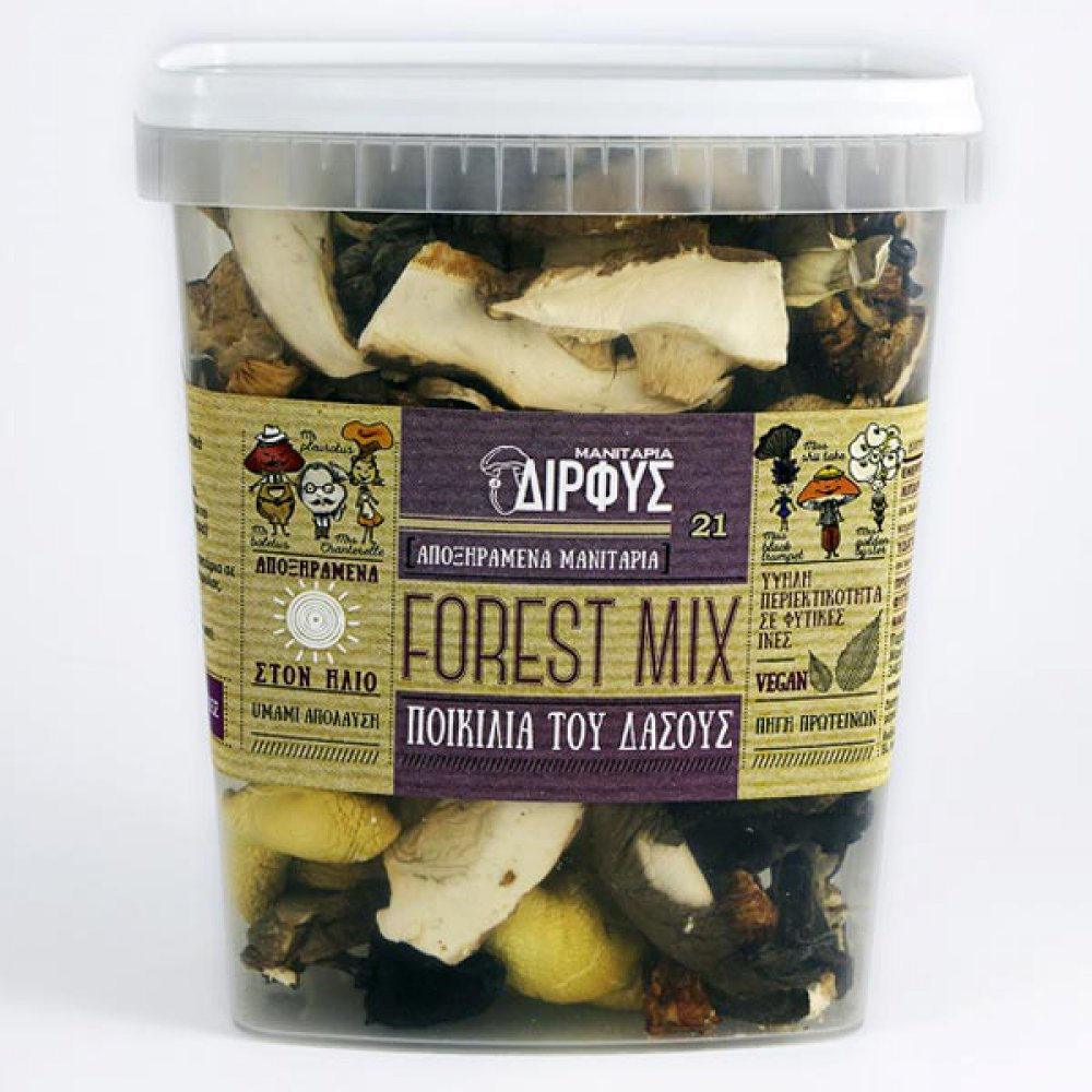 Forest variety of dried mushrooms