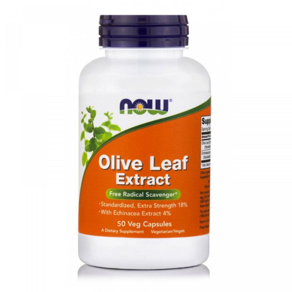 Olive Leaves with Echinacea